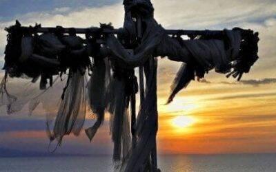 Devotions from Pastor Wilna: Jesus' Question in Suffering