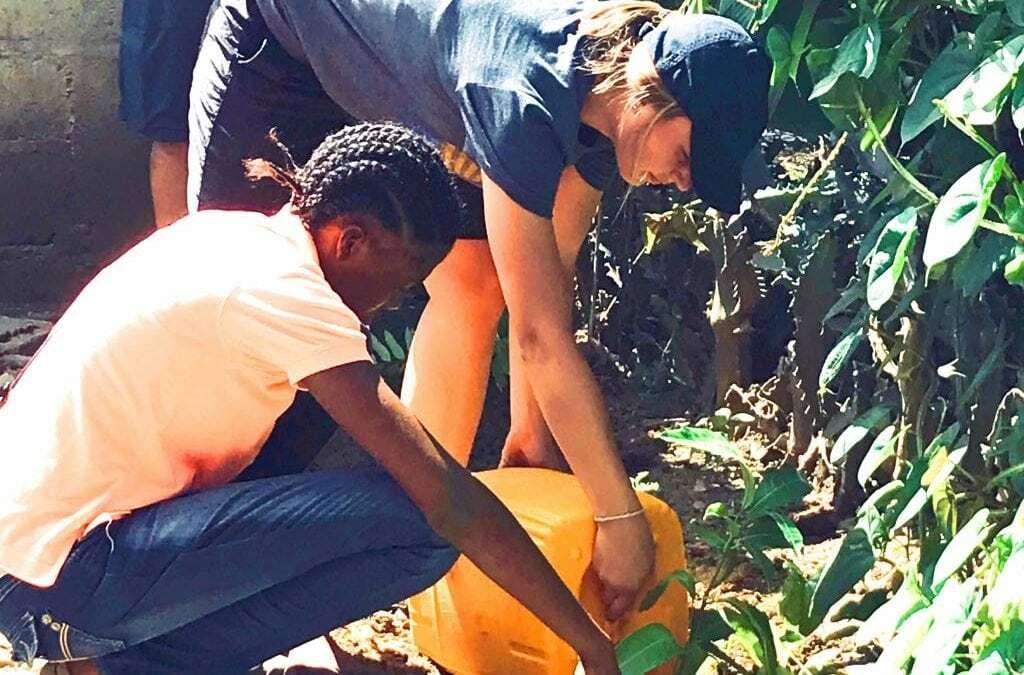 South Dakota Team – Church Clothes and Seedlings