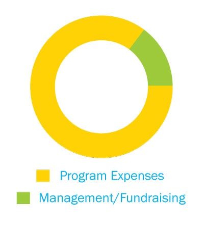 Graph showing 12.2 % of Admin expenses